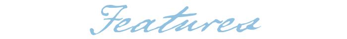 botw-script-header